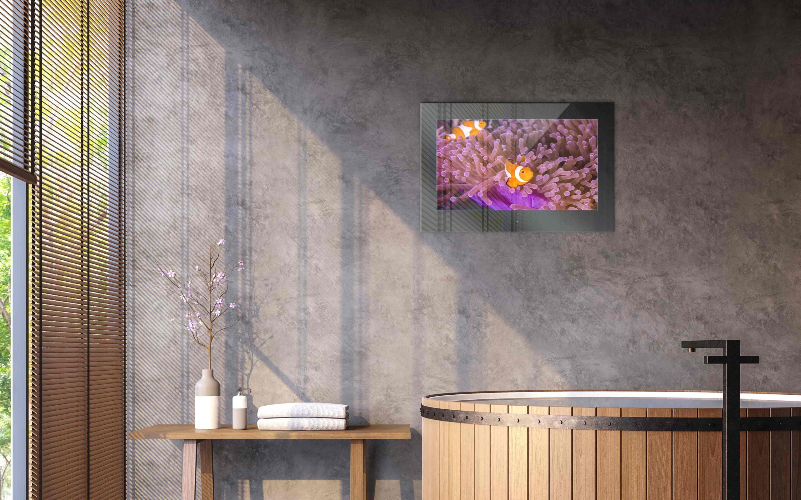Mues-Tec bathroom tv